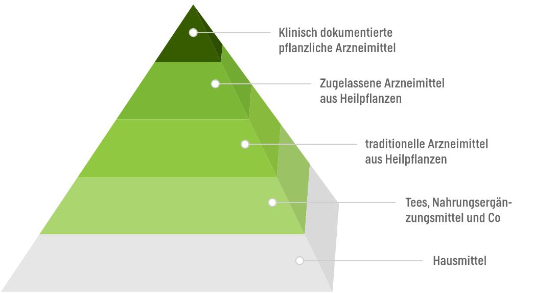 Pyramide der Naturmedizin
