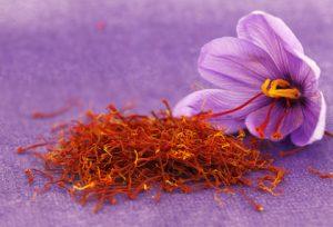 Safran als Heilpflanze