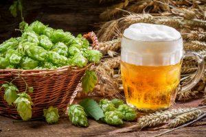 Bier kann gesund sein