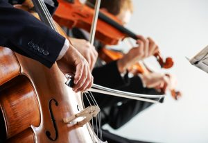 Neurobiologen zeigen was beim Hören im Gehirn passiert